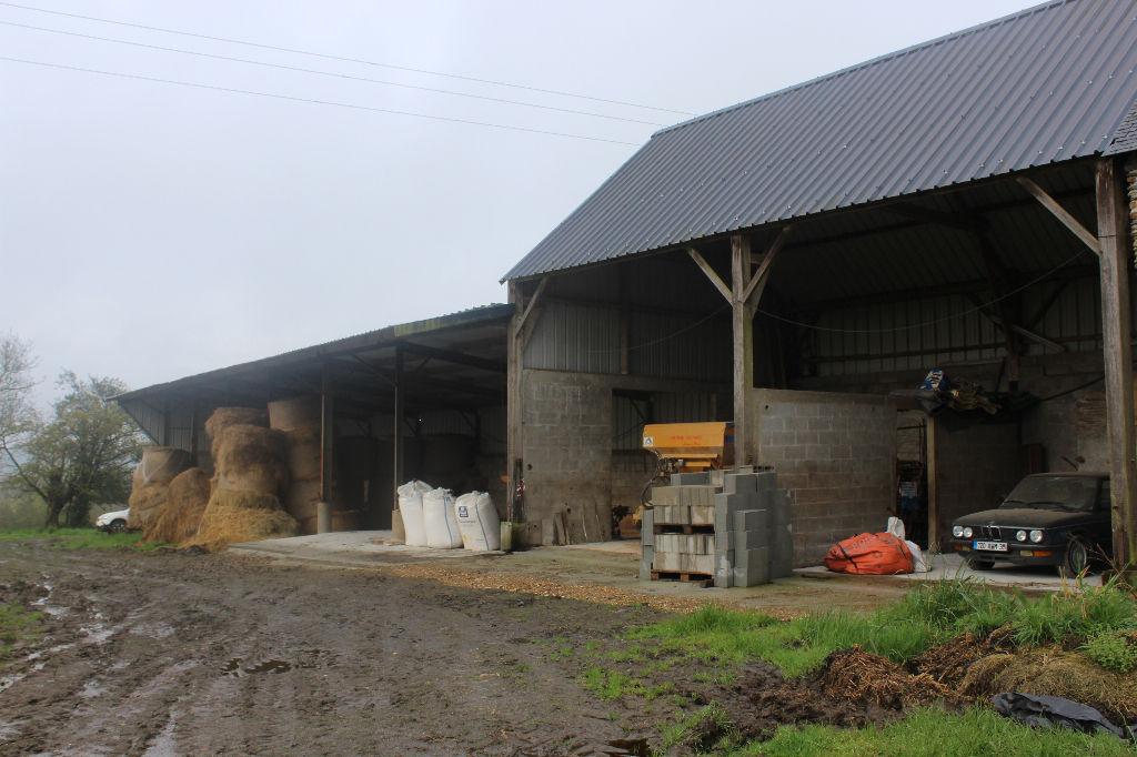 Entrepôt / local industriel Sixt Sur Aff 384 m2